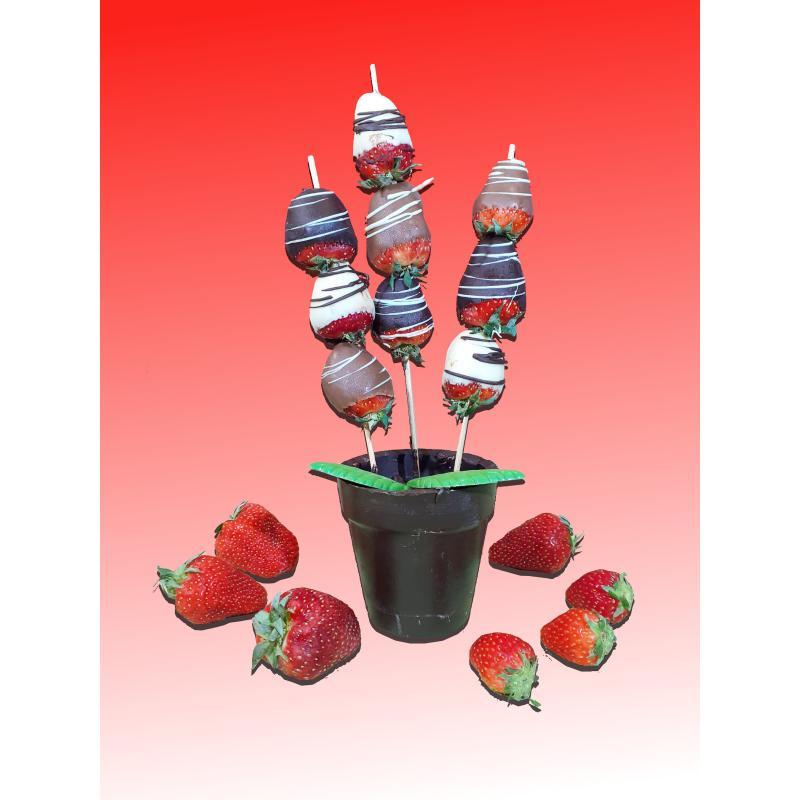 fraise chocolat